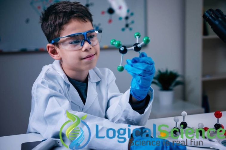 3rd Grade Science Projects Ideas Things To Consider Logical Science